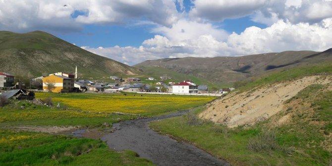 Aşkale Kapıkale Köyü