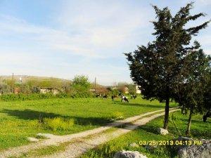 Adana Kozan Yassıçalı Köyü