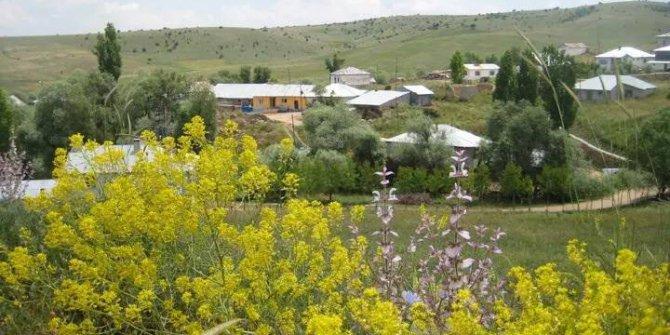 Yıldızeli Yeşilalan Köyü
