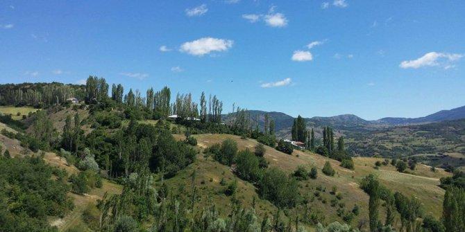 Zara Aşağıkovacık Köyü