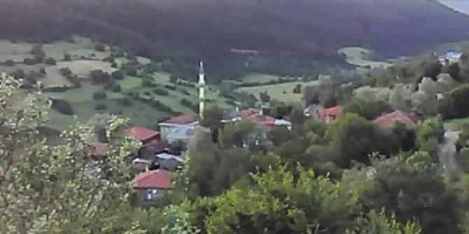 Eflani Gökgöz Köyü