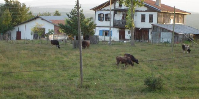 Eflani Kocacık Köyü
