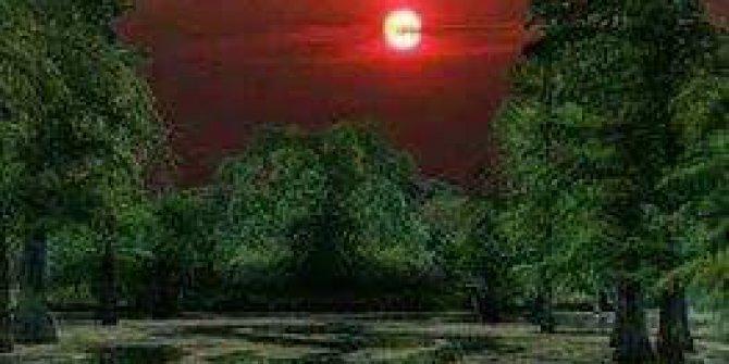 Serdivan Selahiye Köyü