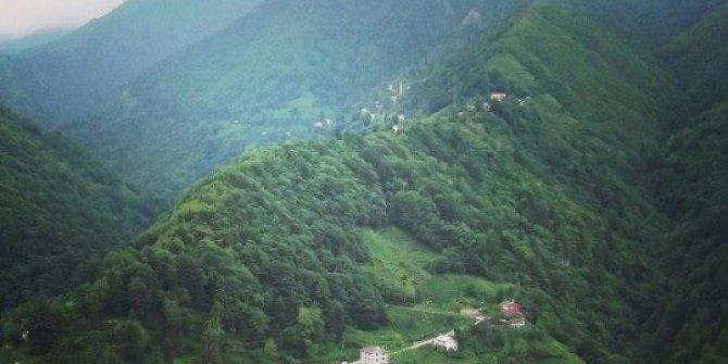 İkizdere Şimşirli Köyü