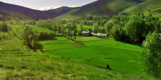 Kelkit Yeşilpınar Köyü
