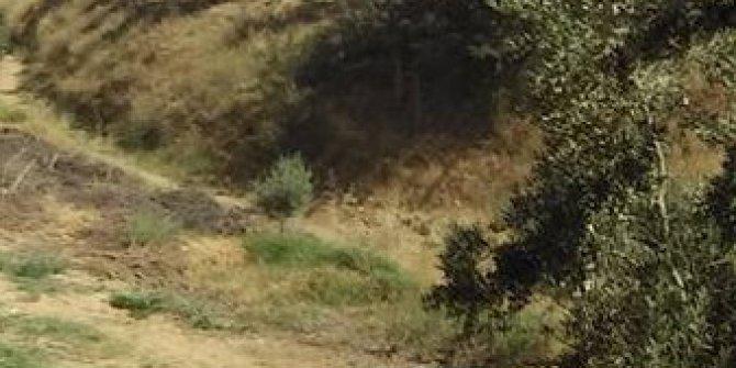 Salihli Torunlu Köyü