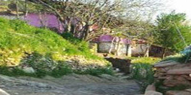 Salihli Üçtepe Köyü