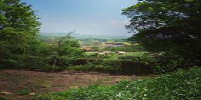 Biga Aşağıdemirci Köyü