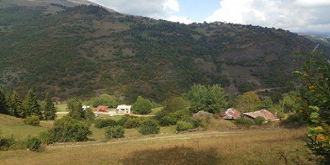 Dereli Güzyurdu Köyü