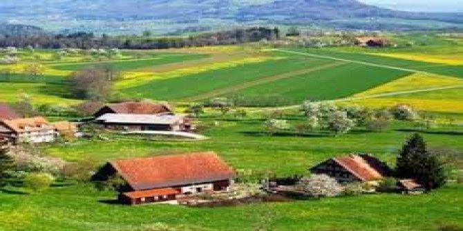 Çan Alibeyçiftliği Köyü