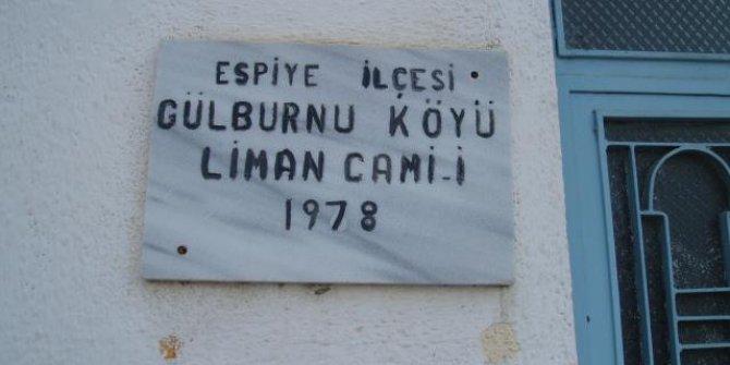 Espiye Gülburnu Köyü