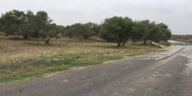 Ezine Bozköy Köyü