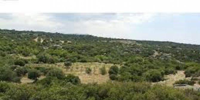 Gelibolu Kocaçeşme  Köyü
