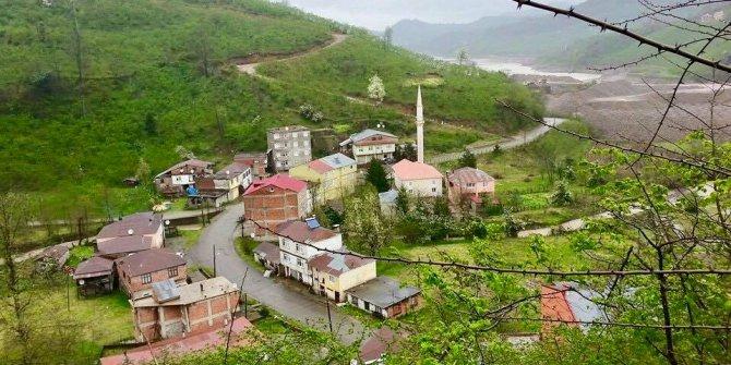 Tirebolu Halaçlı Köyü
