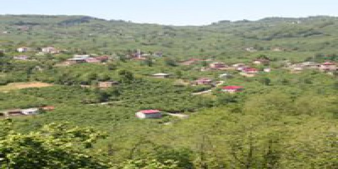 Tirebolu Işıklı Köyü