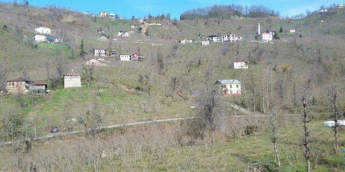 Giresun Orhaniye Köyü