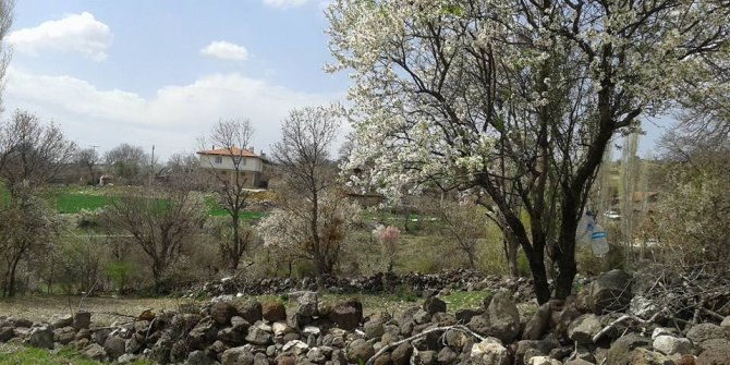 Uşak Zahman Köyü