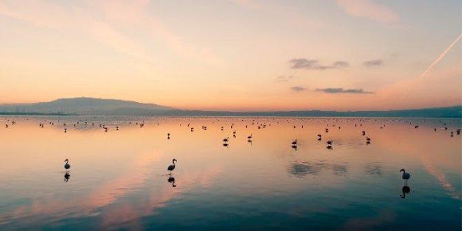 Tarkan'dan Gediz Deltası'nın Unesco Dünya Doğa Mirası Olması İçin Destek