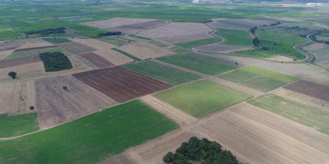 Güneydoğu'da 400 Köyde Arazi Birleştirme Çalışmaları Bitti