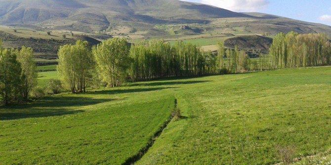 Bayburt Yeşilyurt Köyü