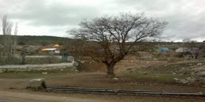 Odunpazarı Kayacık Köyü