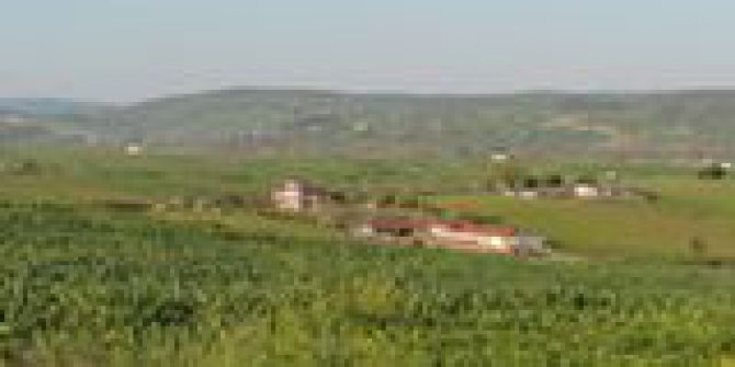 Körfez Naipköy Köyü