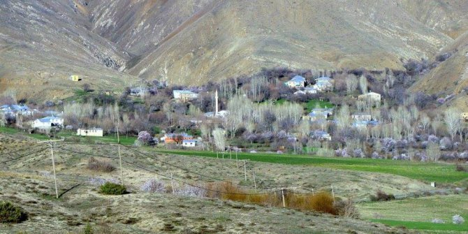 Palu Karacabağ Köyü