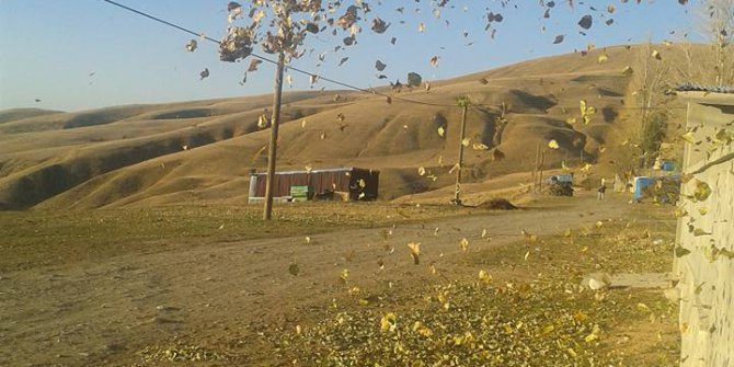 Çayırlı Yukarıkartallı Köyü