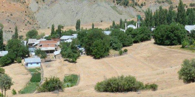 İliç Sarıpınar Köyü