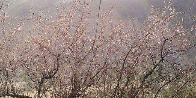 Refahiye Kırkbulak Köyü
