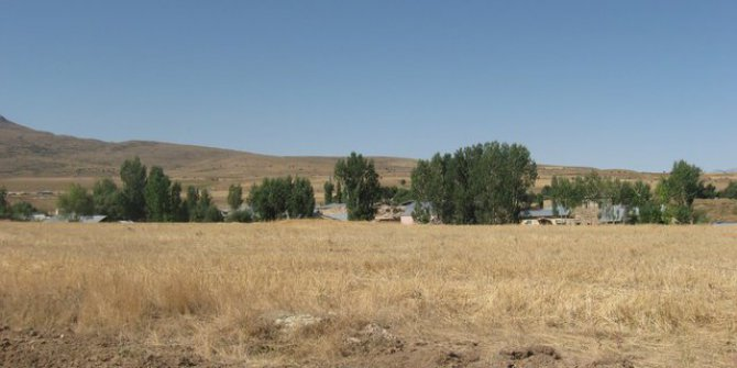 Tercan Dallıca Köyü