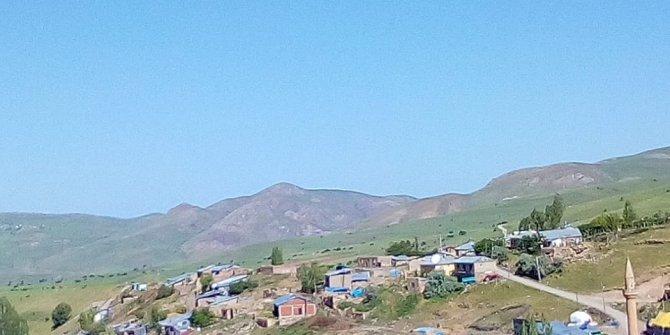 Tercan Kökpınar Köyü