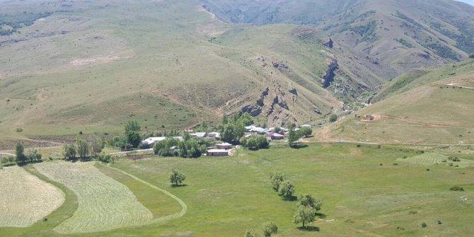 Tercan Sağlıca Köyü