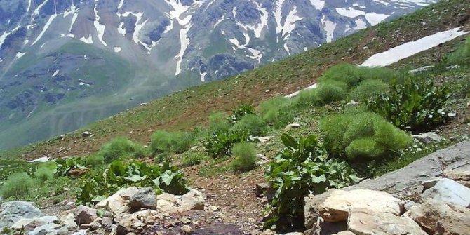 Erzincan Oğulcuk Köyü