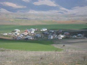 Adana Tufanbeyli Taşpınar Köyü