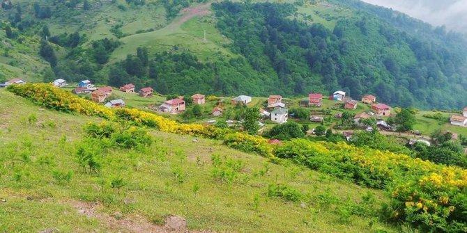 Aybastı Uzundere Köyü