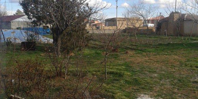 Altınekin Mantar Köyü