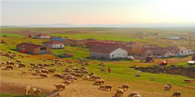Altınekin Sarnıçköy Köyü