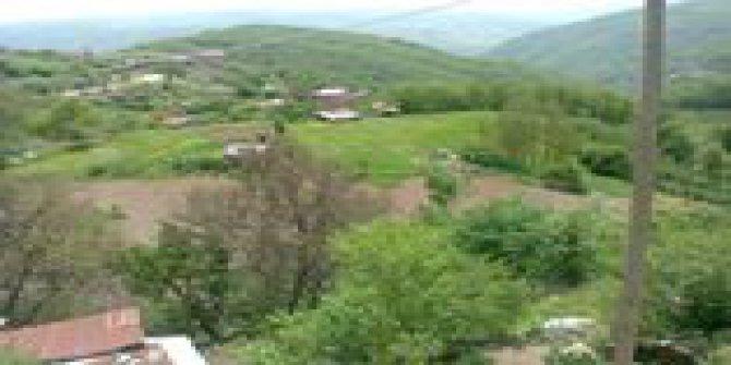 Mesudiye Hamzalı Köyü