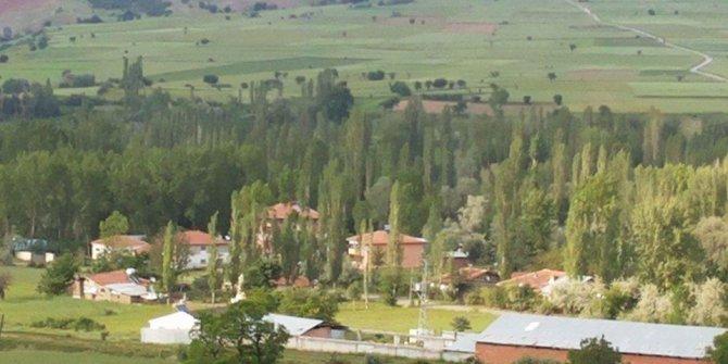 Zile Yaylakent Köyü