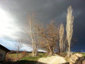 Bolu Ağaççılar Köyü