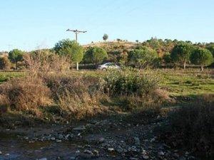 Balıkesir Ayvalık Bağyüzü Köyü