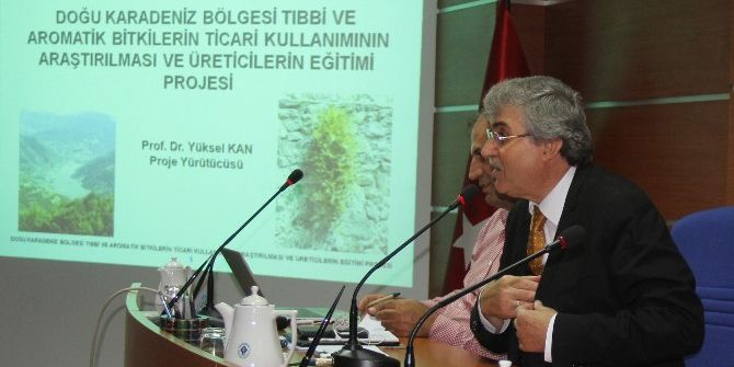 Doğu Karadeniz'de Bitki Envanteri Çıkartılıyor