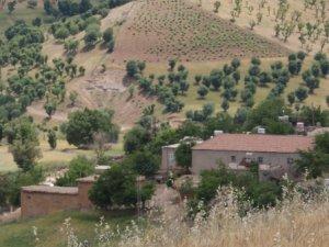 Adıyaman Kahta Taşlıca Köyü