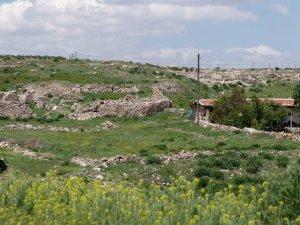 Afyon Evciler Altınova Köyü