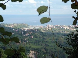 Rize Akdere Köyü