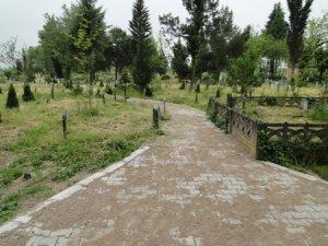 Sakarya Abalı köyü