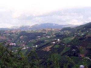 Trabzon Acısu Köyü