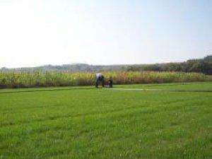 Edirne Avarız Köyü