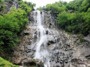 Artvin Arılı Köyü